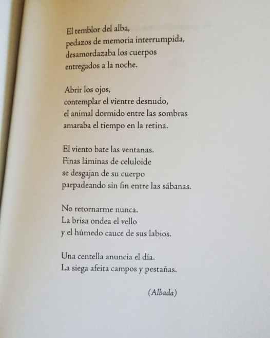 Albada - Toni Quero