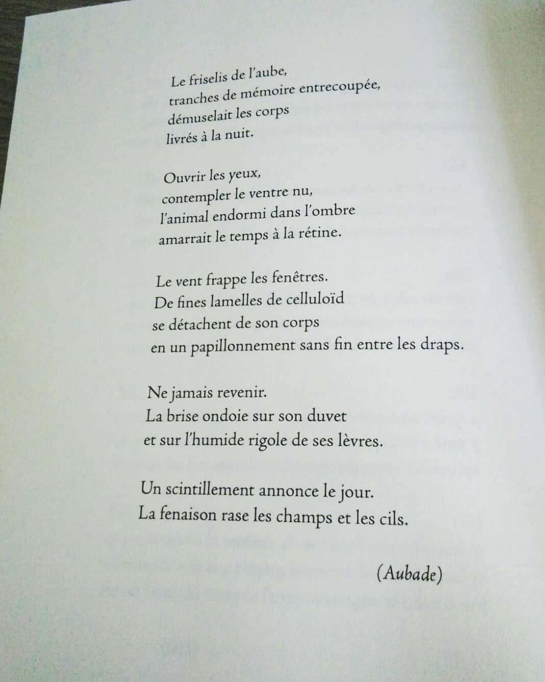 Aubade - Toni Quero
